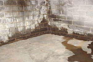 basement remodeling services new jersey